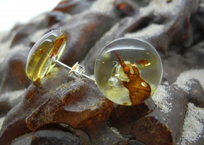 Natural Baltic amber earrings engraved guitar EAR05